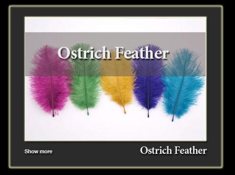 sanat-ostrich-feather-en